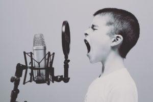 voice drops services